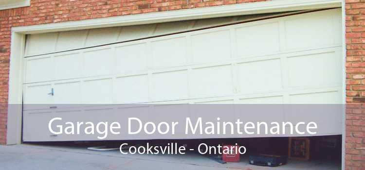Garage Door Maintenance Cooksville - Ontario