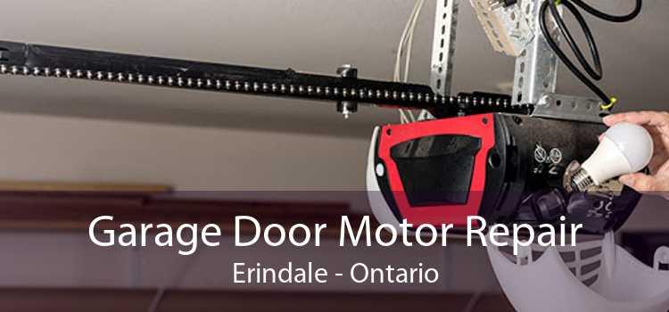 Garage Door Motor Repair Erindale - Ontario