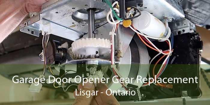 Garage Door Opener Gear Replacement Lisgar - Ontario