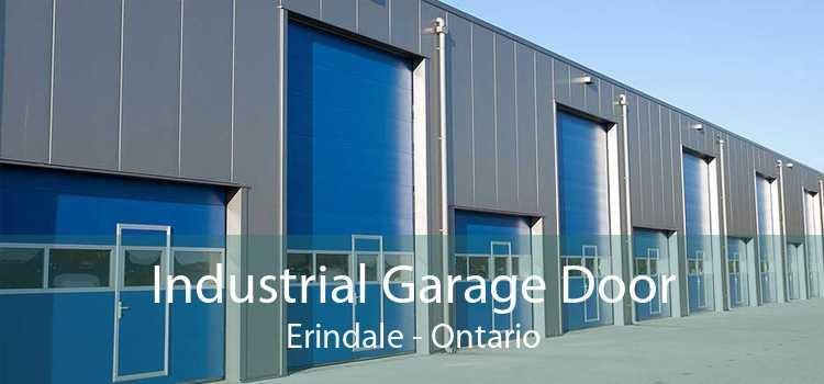 Industrial Garage Door Erindale - Ontario