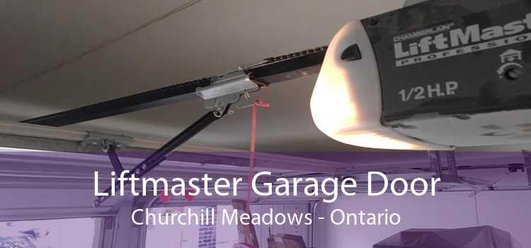 Liftmaster Garage Door Churchill Meadows - Ontario