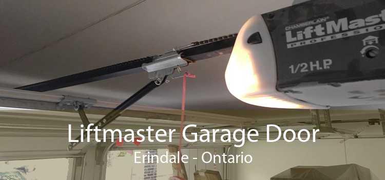 Liftmaster Garage Door Erindale - Ontario